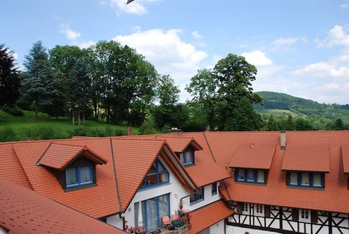 Glattbacher Hof - Ferienwohnungen im Odenwald App8 - Lindenfels - Casa de vacances