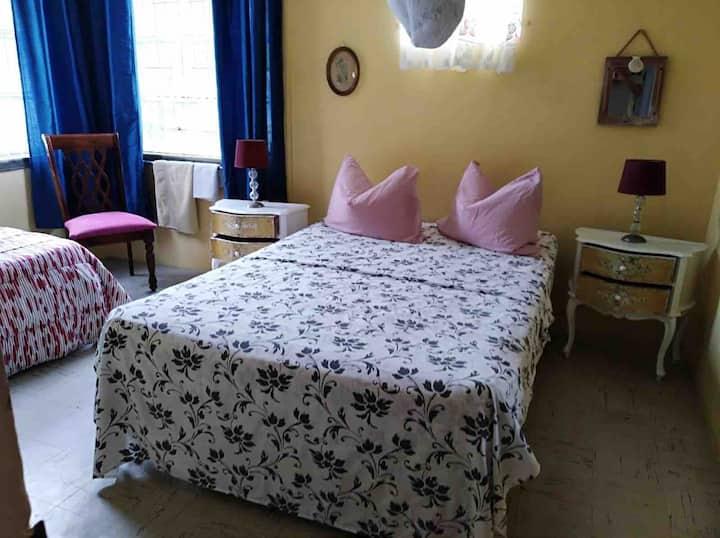 Reasonable room single-double bed