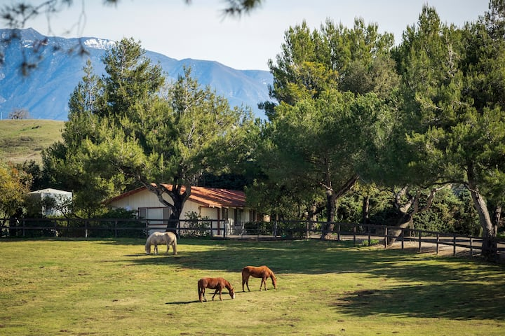 Private Guesthouse on Picturesque Horse Ranch