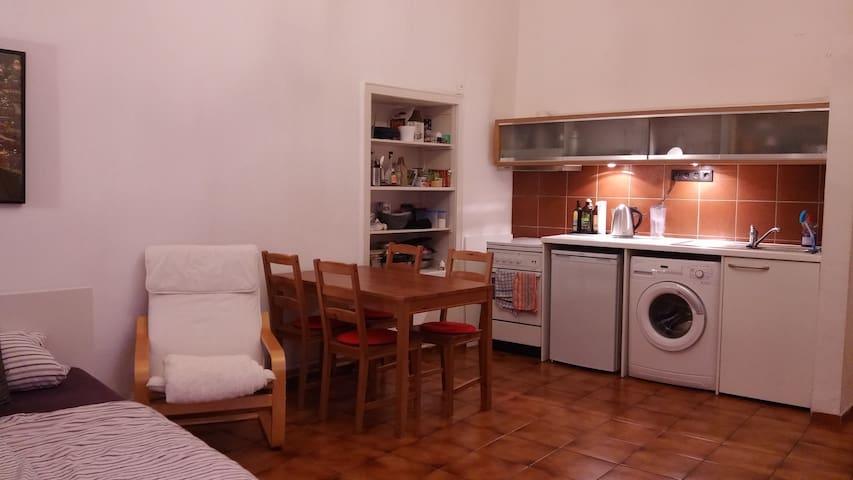 Gemütliche 1-Zimmer Wohnung in zentraler Lage - Würzburg - Appartement
