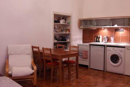 Gemütliche 1-Zimmer Wohnung in zentraler Lage - Würzburg - Apartamento