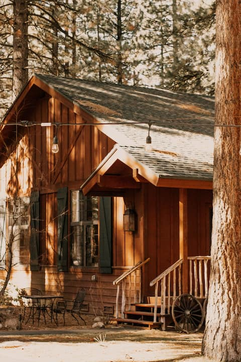 Black Bear Lodge and Cabins: The Studios