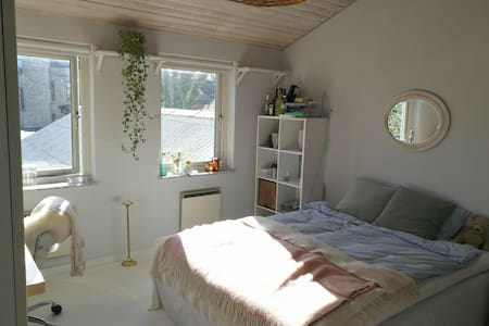 Nice rooms in the center of Lund