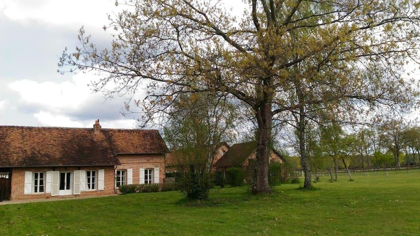 Gîte de La Petite Vigne - Salbris - Huis