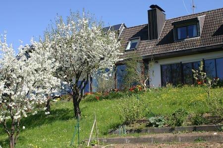 Ferienwohnung am Sonnenhang - Tengen-Büßlingen - Wohnung