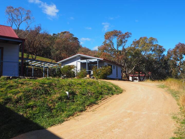 Kangaroo cottage. Stay in a wonderful vineyard