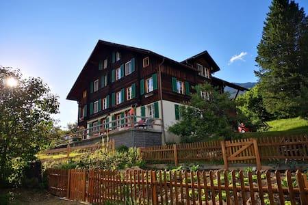 Schöne Aussicht(en) in Grindelwald