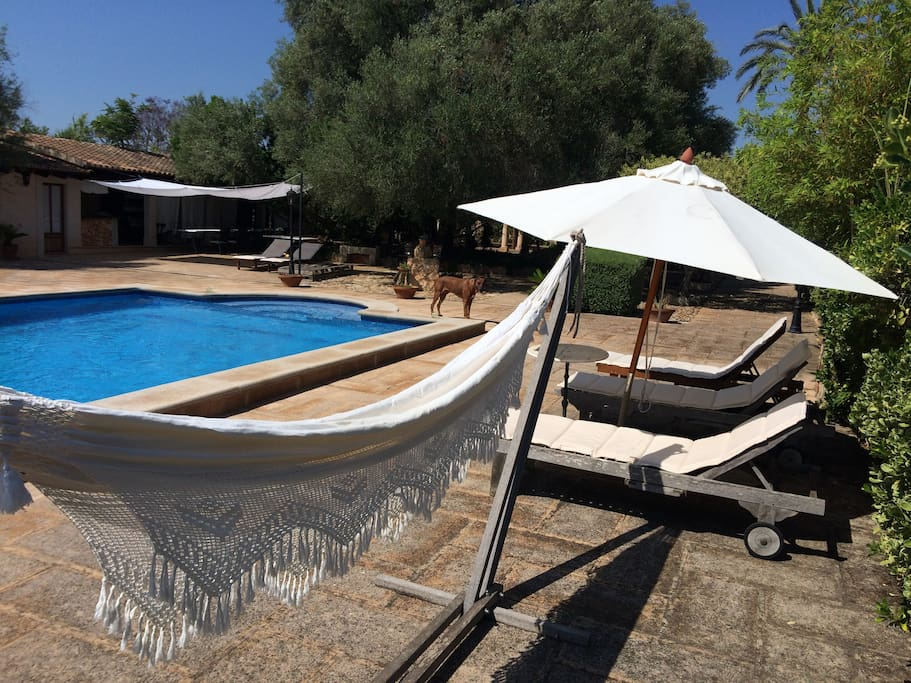 mallorquinischen finca mit gro em salzwasser pool huse. Black Bedroom Furniture Sets. Home Design Ideas