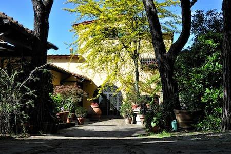 B&B LA DIMORA DI ALIDA Double Room - Fiesole - Villa