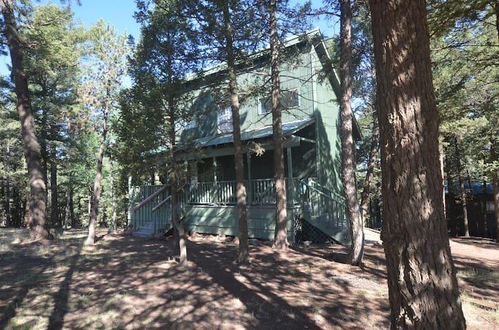 Stillforest Cabin on 11 acres - Divide, CO