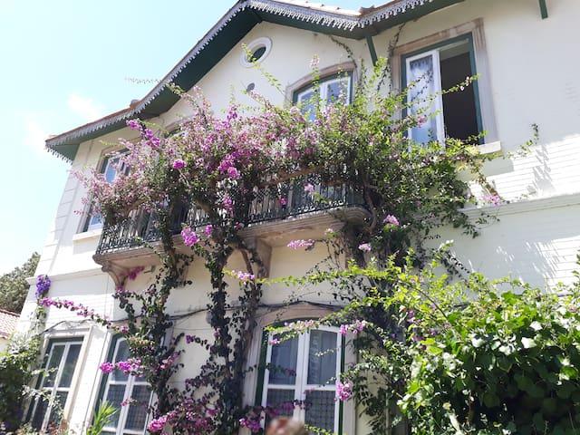 Casa das buganvílias