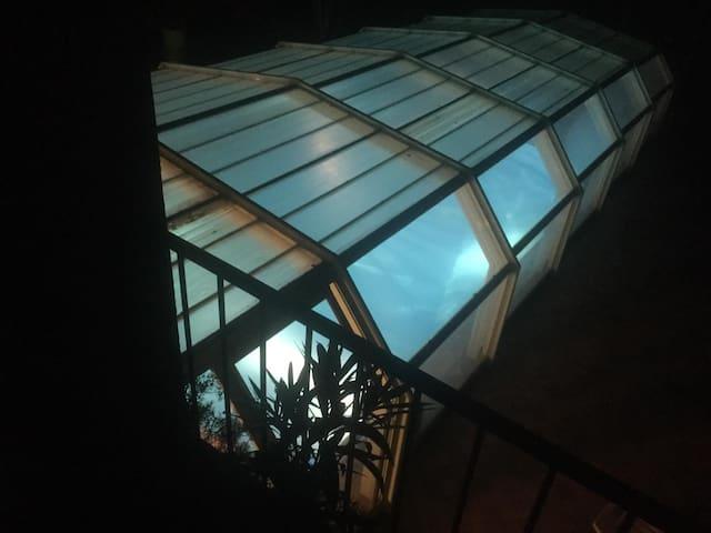 Bagno di mezzanotte // Midnight dip // Baño de medianoche