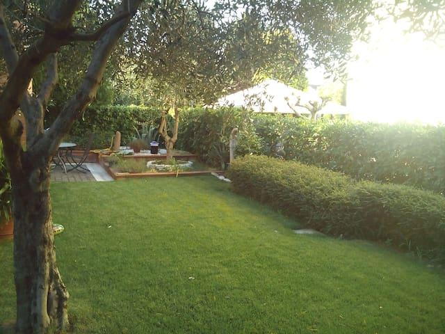 Airbnb Tass Di Soggiorno Rimini  Pictures