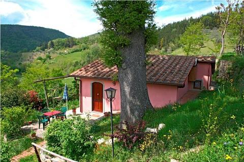 Holidayhome in Toscana/ Swimmingpool / Casa Rosa