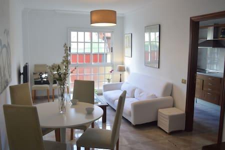 Precioso piso en centro de Santa Cruz de Tenerife - Santa Cruz de Tenerife - Lägenhet