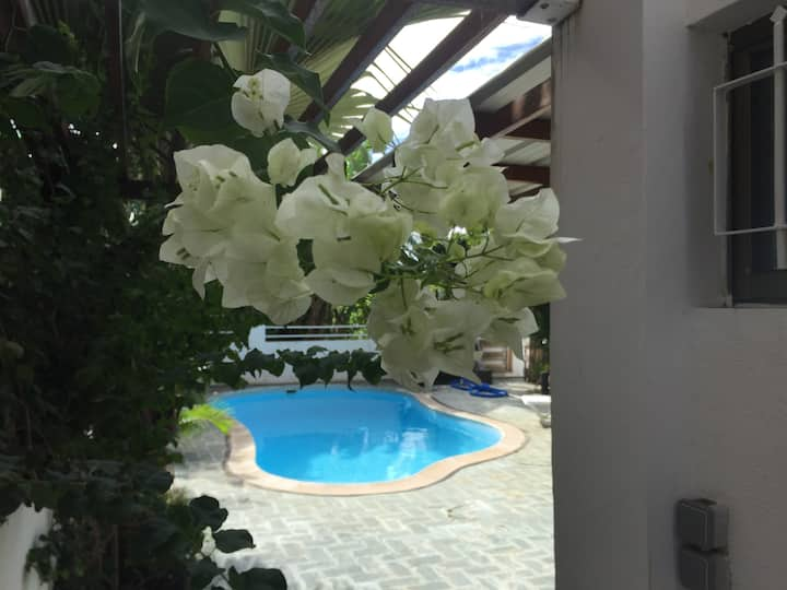 Salvia villa valari
