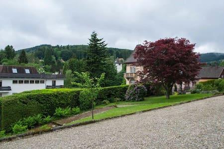 Close to the city center, double ro - Saint-André-de-Cubzac - Wohnung