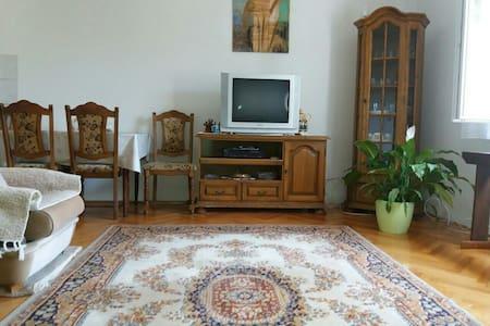 Guest room Danka