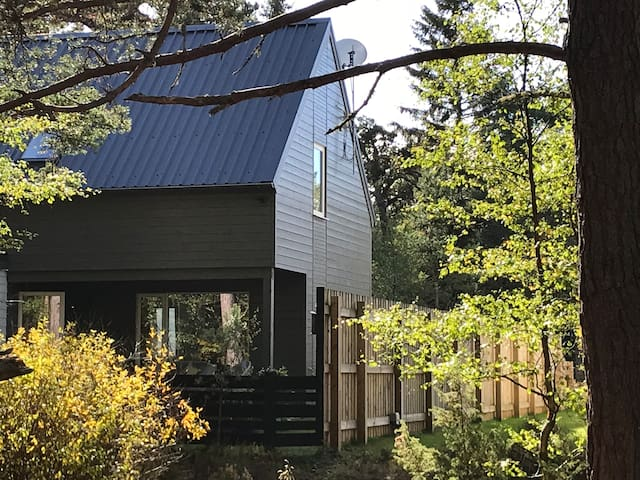 The Green Lodge Aviemore - 5⭐️ luxury in the woods