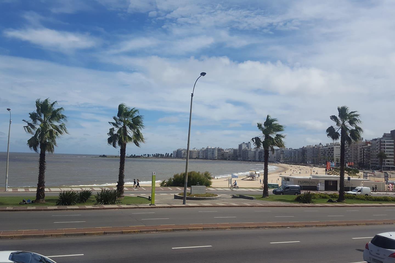 Vista desde el balcón, Playa Pocitos