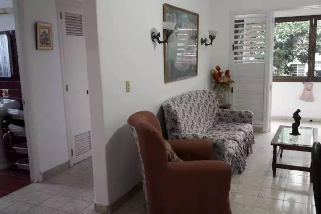 Amplía sala del apartamento y acceso a las habitaciones.