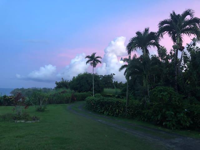 Port Antonio Oceanview Dream Cottage