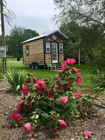 Tiny Home On Wheels #2