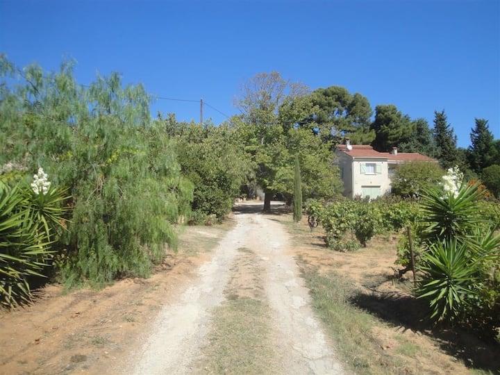 Haut de villa refait à neuf au milieu des vignes