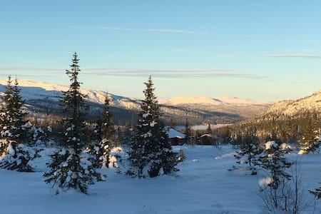 Synnfjell - hytte på fjellet - SYNNFJELL  SPÅTIND
