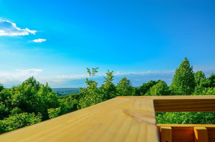 Amazing View Family Cabin plus Bonus King Suite