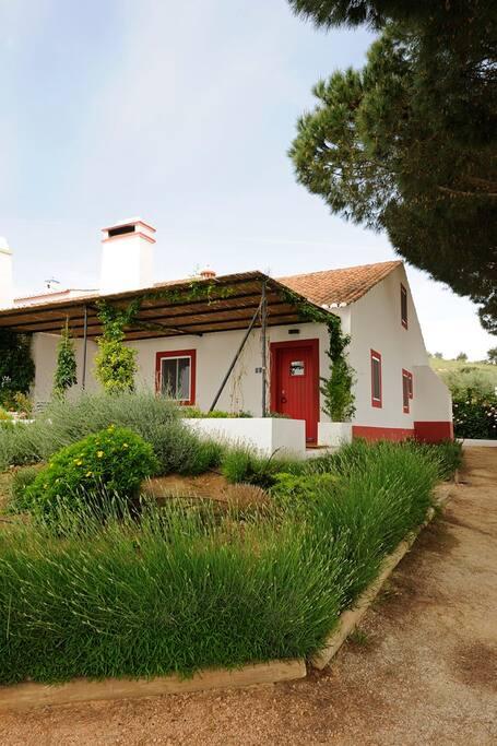 Zona Exterior/Casa