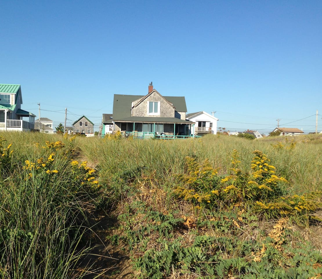 Welcome! The front of the house as seen from the beach with goldenrod in bloom.