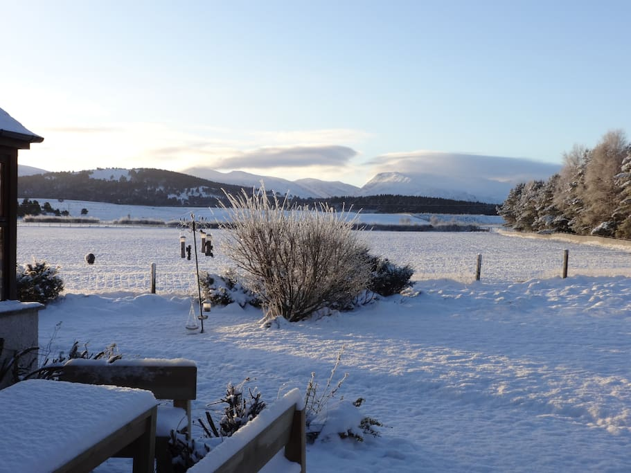 view to the Cairngorms and Abernethy forest from the dining room