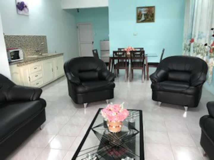 Newly renovated, cozy apartment at Mont Choisy