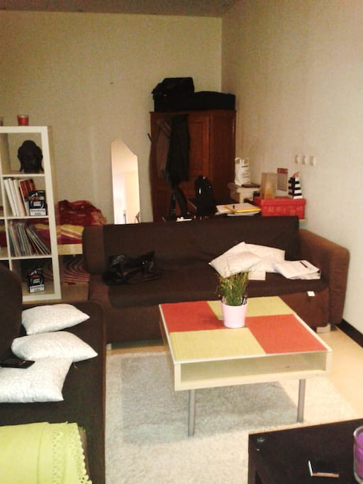 cocoon apartments for rent in saint tienne rh ne alpes france. Black Bedroom Furniture Sets. Home Design Ideas