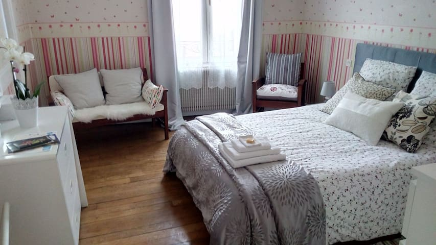 Confortable bedroom - 10 min walk to DT ! - Orléans - Huis