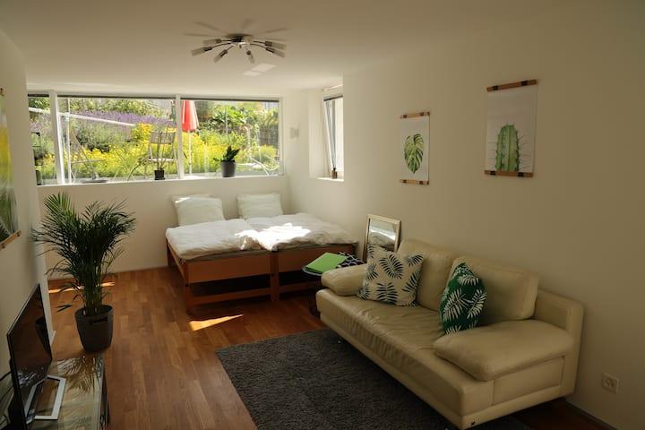 Nice and cozy room in Binningen