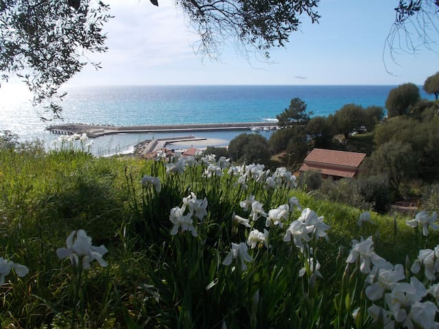 Apartment in Cilento - Italy - Pisciotta - Apartment