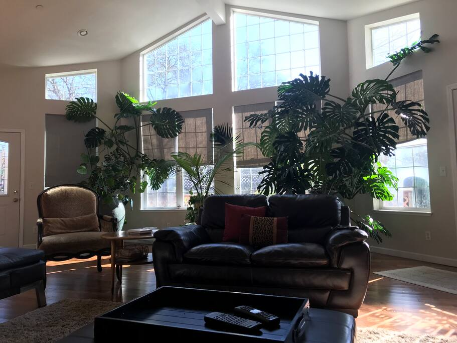 Large windows off great room