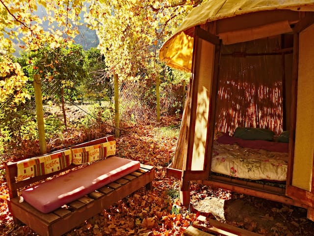 alternative camp in the nature directly at the sea - Çıralı - 小屋