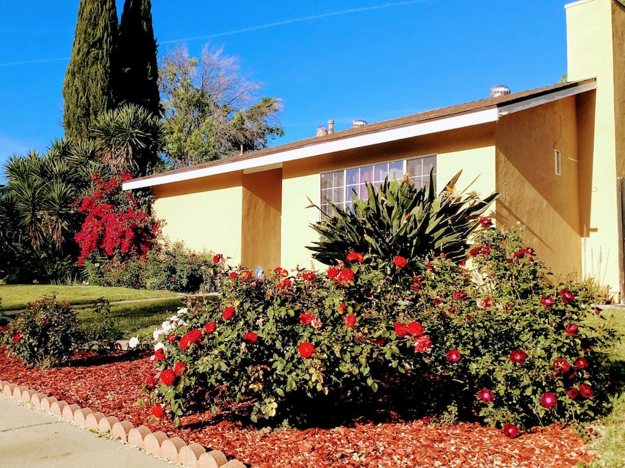 Family friendly -  Quiet neighborhood AND conveniently located near several shopping centers