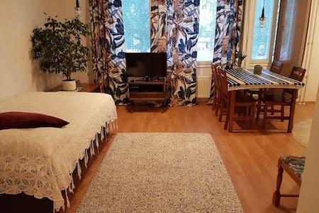 Rauhallinen ja siisti yksiö, rentoa majoitusta
