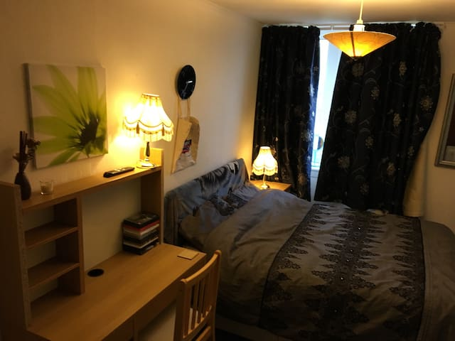 Large double bedroom available - Newcastle upon Tyne  - Huoneisto