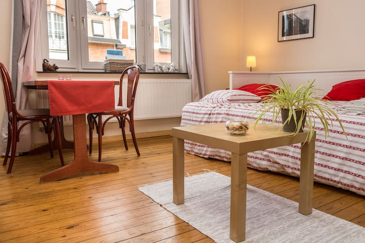 Cosy studio near Center/Airport - Schaerbeek - Apartment