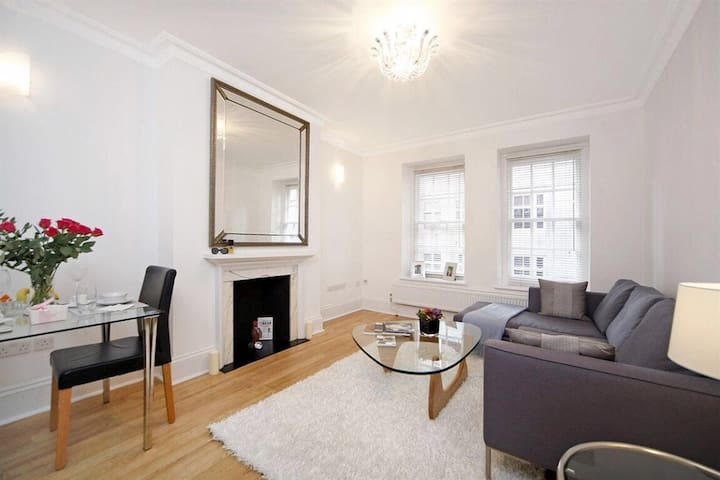 Trendy flat in Mayfair