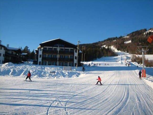 Ski INN/UT på Norefri/Norefjell.