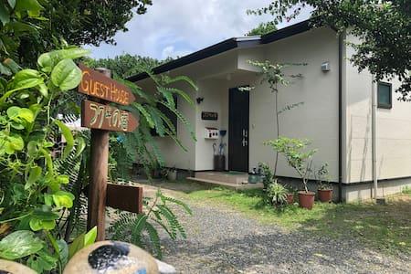 フクギの宿☆国直にあるフクギに囲まれた静かな宿☆ビーチまで徒歩1分!1棟貸切ゲストハウス