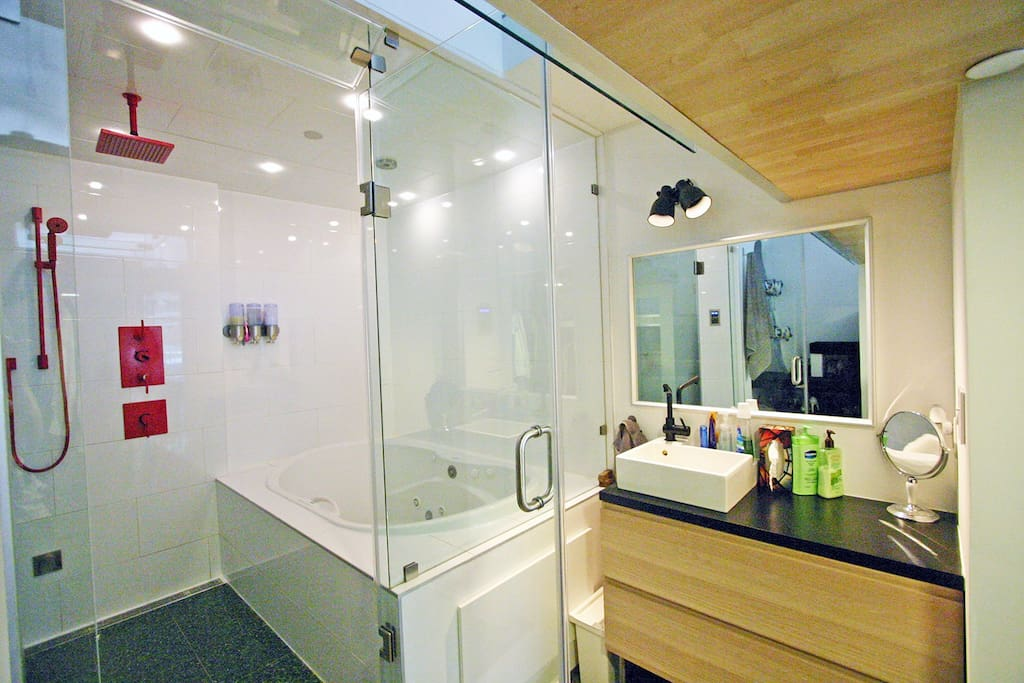 open concept rain shower + jacuzzi tub