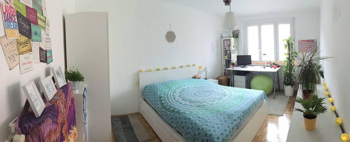 Cosy and calm bedroom between Rosenhain/Hilmteich - Graz - Byt