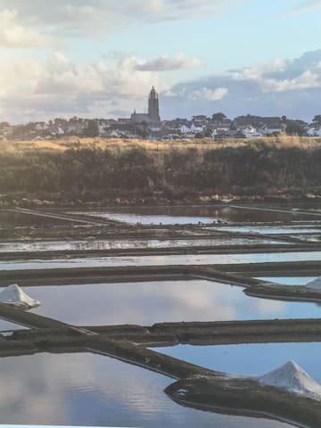 Les marais salants de la commune de Batz sur mer